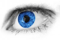 Soczewki Big Eyes